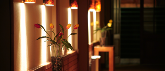 Keiba Solutions Mood Lighting